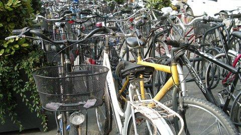 Ladro di biciclette fermato a Firenze