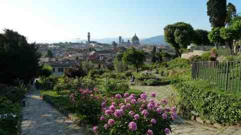 Giardino delle rose vista indimenticabile su firenze obiettivotre obiettivotre - Giardino delle rose firenze ...