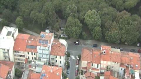 Pineta di Viareggio - Foto carabinieri di Viareggio