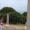 Turismo: riapre al pubblico la Villa Romana a Giannutri