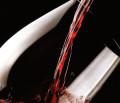 Expo Milano 2015: da Pisa il vino senza conservanti