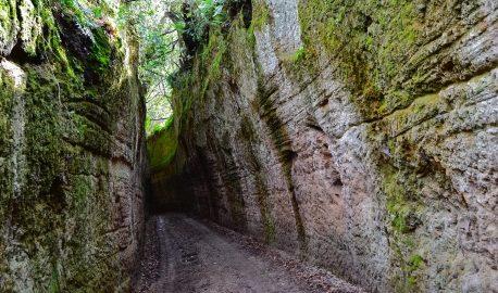 Toscana Terra Etrusca, nuovo prodotto turistico omogeneo della Toscana